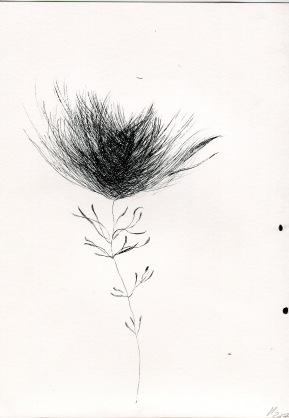Botanical studio 1, ink on paper