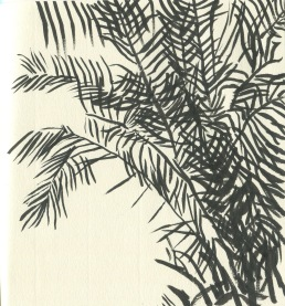 ink brush palms
