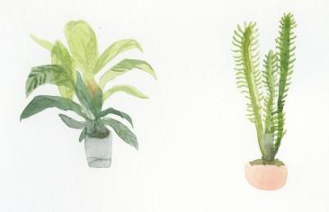 piante casa medium 2