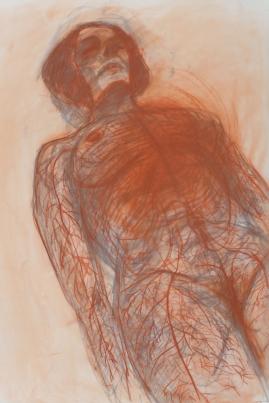 Sistema Sanguigno drawing ok